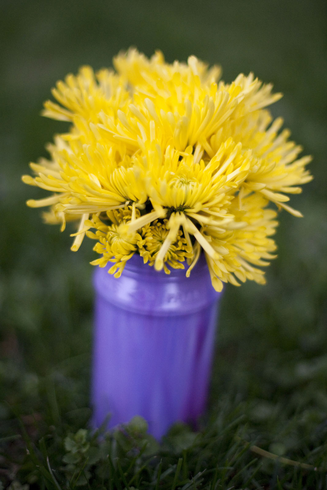 purple glass vase with yellow flowers