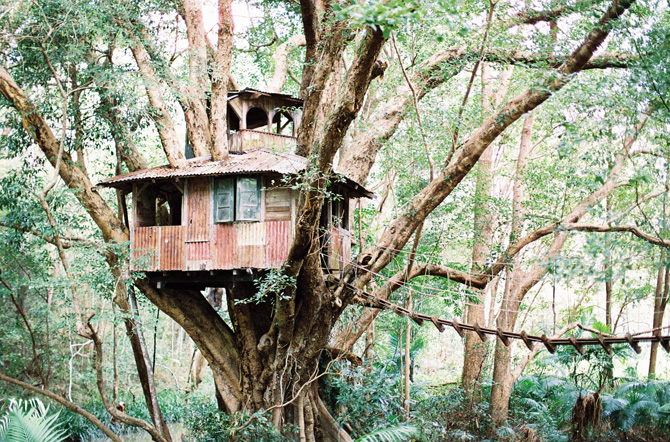 Queensland Australia Treehouse Wedding