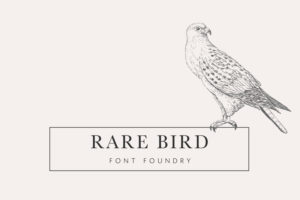 Introducing Rare Bird Font Foundry